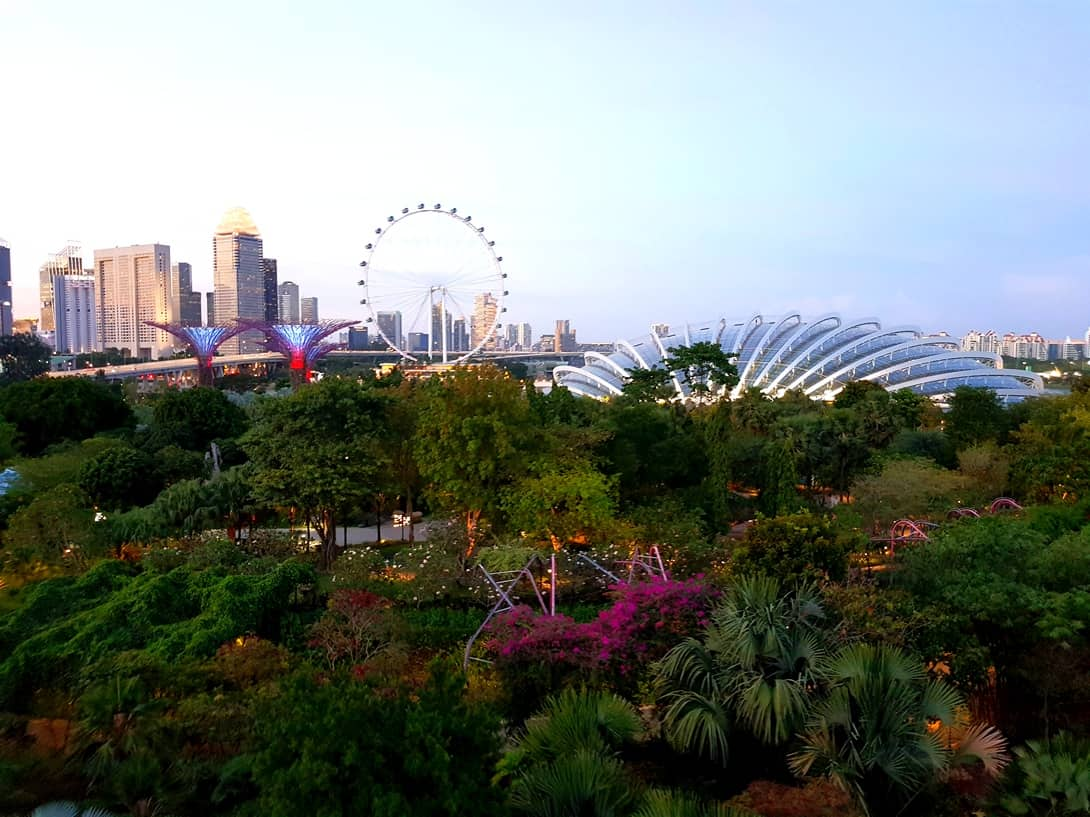 Gardens by the Bay, Singapur Flyer, und Flower Dome