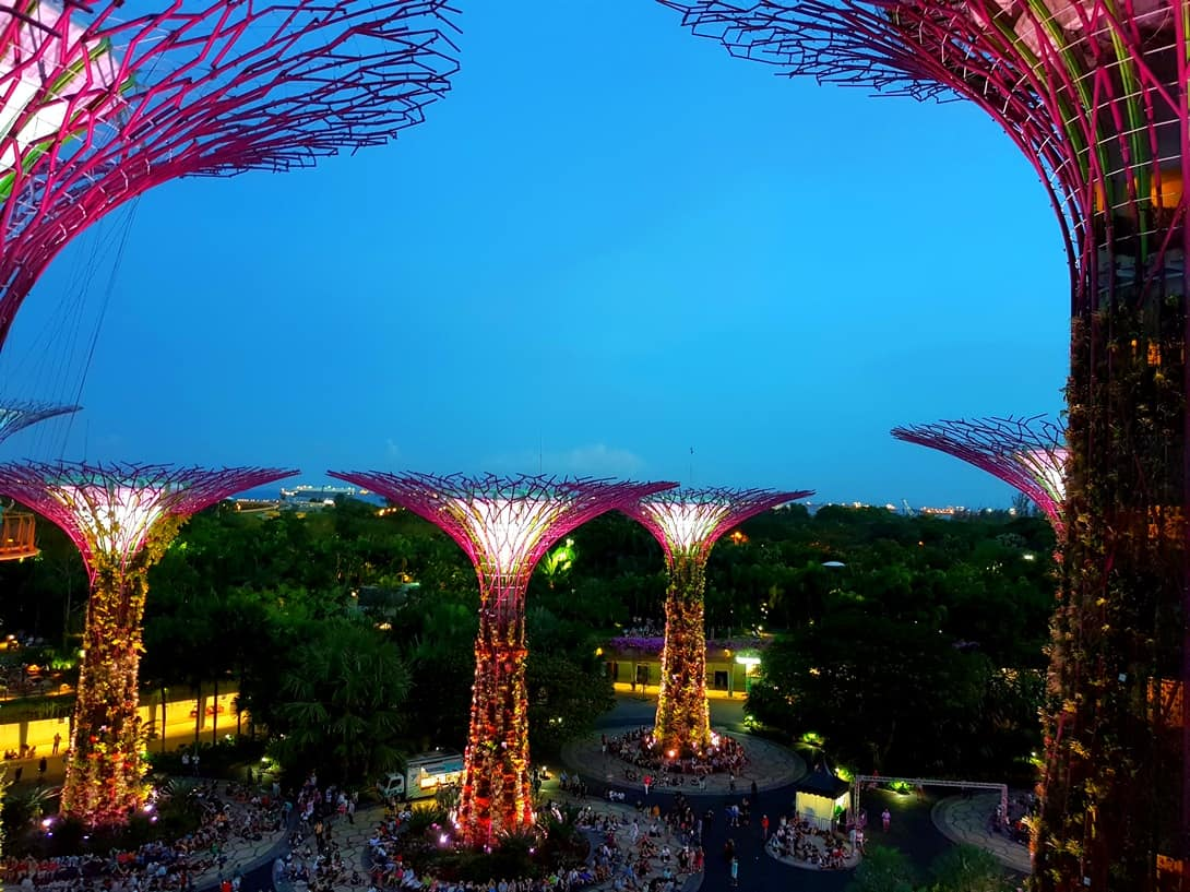 Supertrees im Garden by the Bay, Singapur