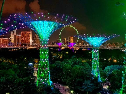 Gardens by the Bay 2019